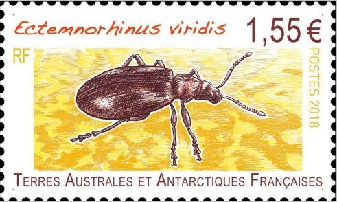 """Résultat de recherche d'images pour """"timbre viridis terres Australes"""""""